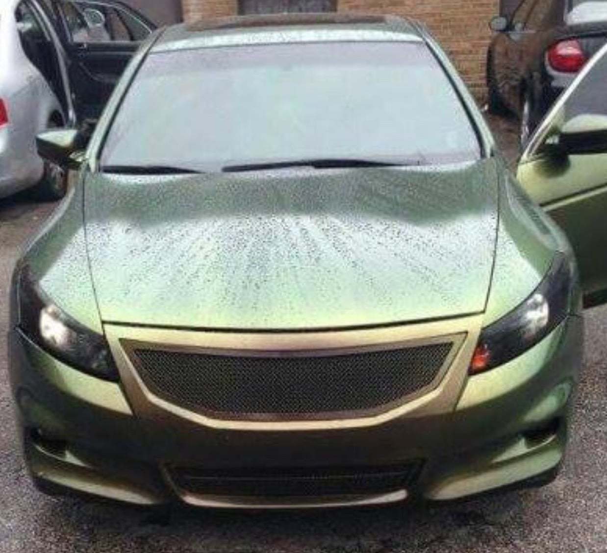 Pearlescent Car Paint >> Green Gold Bronze Chameleon Paint Paint With Pearl