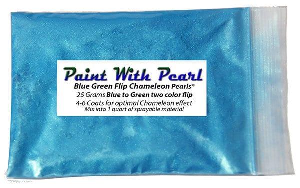 blue-green-chameleon-bag