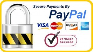 Secure Payments By Paypal, Visa, Mastercard, American Express, Discover. Verisign Secure.
