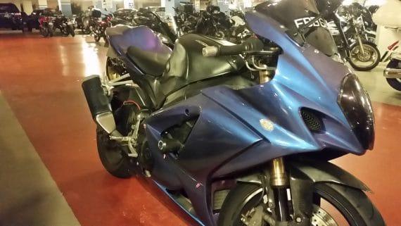 blue purple chameleon bike 2