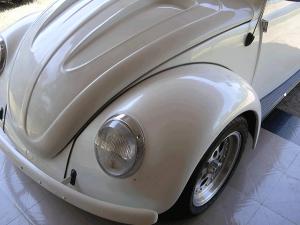white-bug-silver-crystal